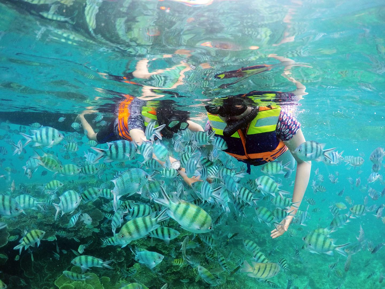 Paket Tour Belitung 2d1n Reguler